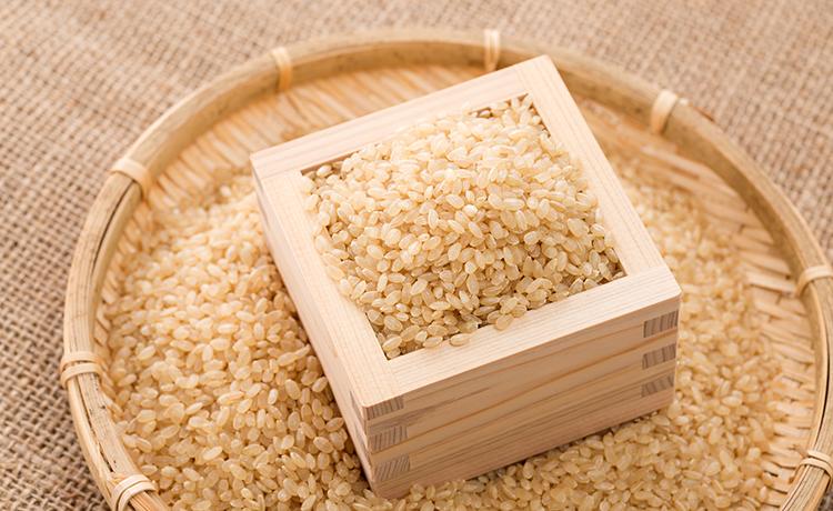 玄米のイメージ写真
